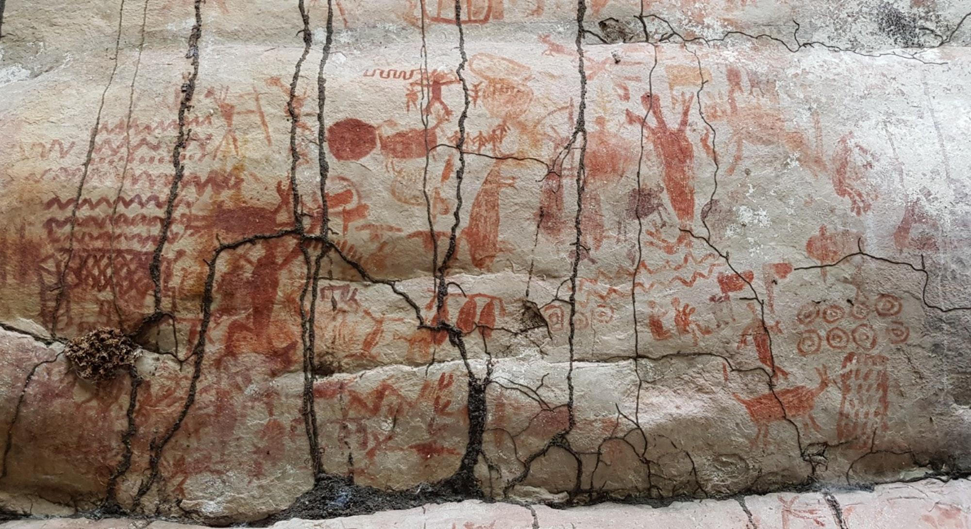 La jungle colombienne livre des milliers de peintures rupestres